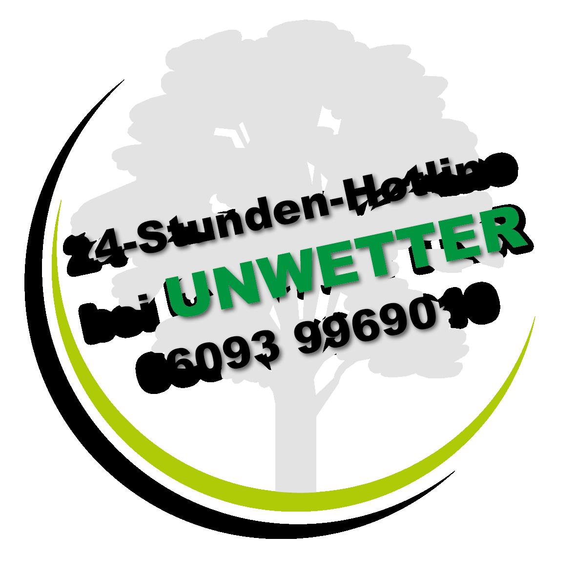 Sturmschaden Wind Unwetter Aschaffenburg