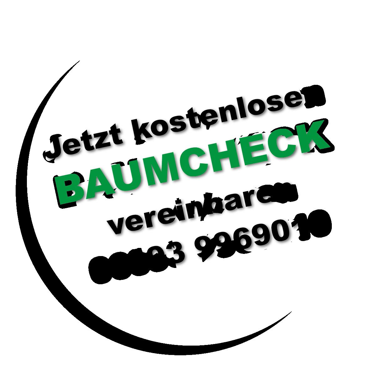 Baumkontrolle Baumcheck Baumdienst Gerber