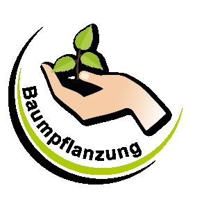Baumpflanzung Aschaffenburg