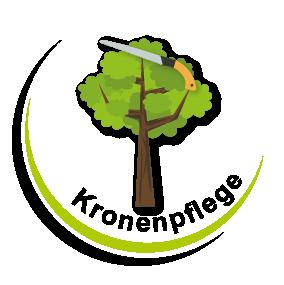 Kronenpflege Kronenschnitt Baumschnitt Baumdienst Gerber