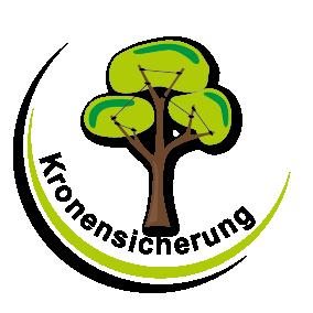 Kronensicherung Baumdienst Gerber